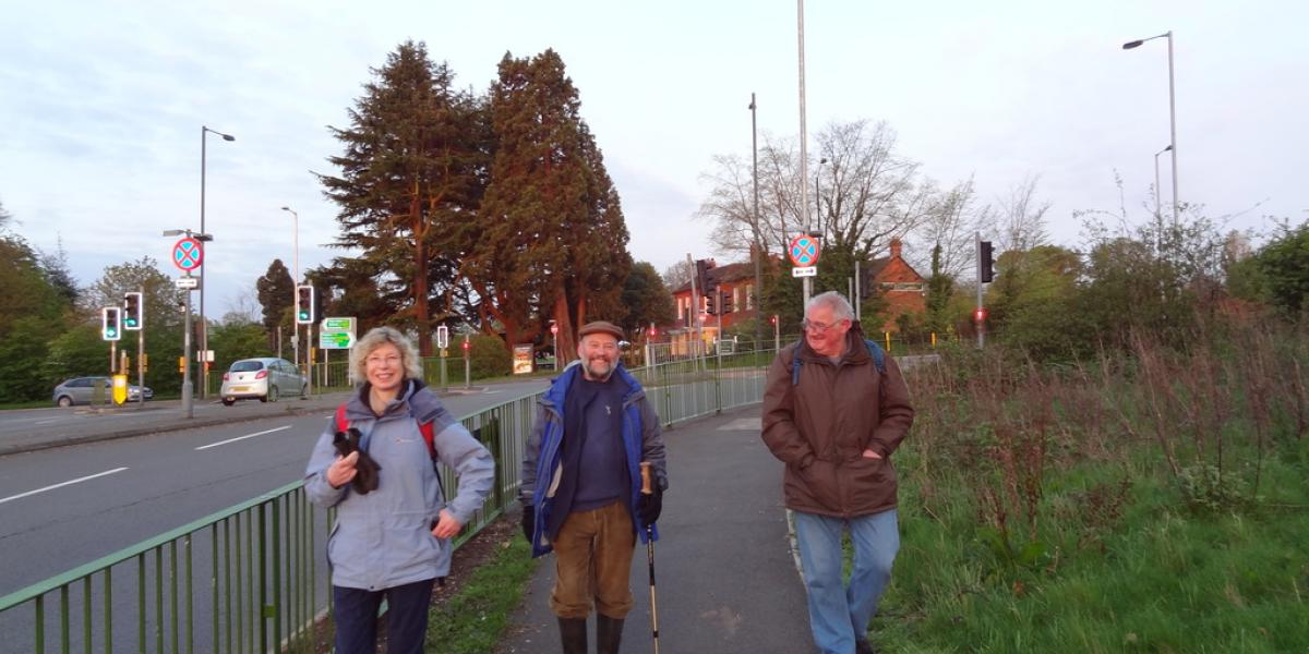 Walks 2012