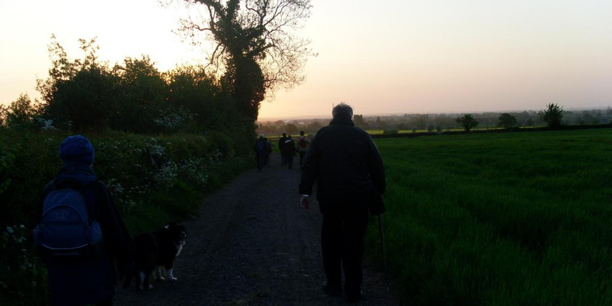 Walks 2011 #4